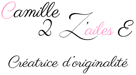 Logo Camille 2 z'ailes E