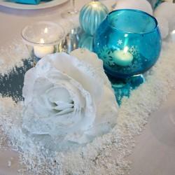 deco centre table reine neiges 2