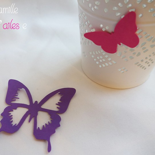 confetti grand papillon fuchsia violet rose dragée 2