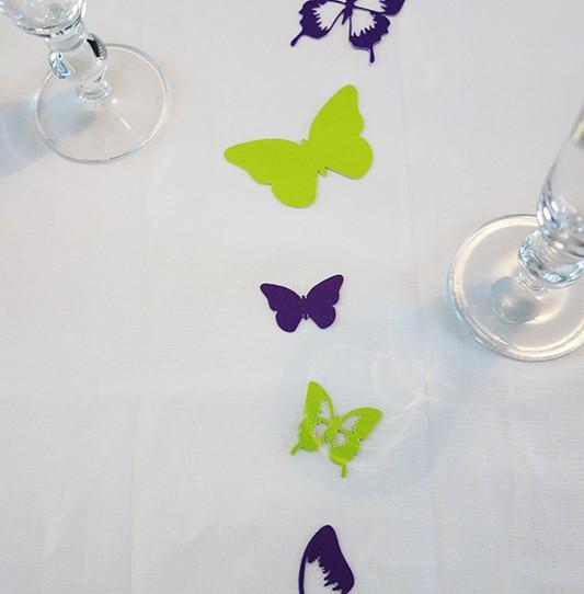 confetti grand papillon violet vert anis