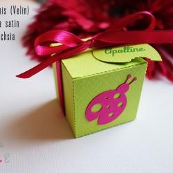 boite dragées coccinelle vert anis fuchsia 1
