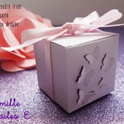 boite envolée papillon rose poudré irisé dragée